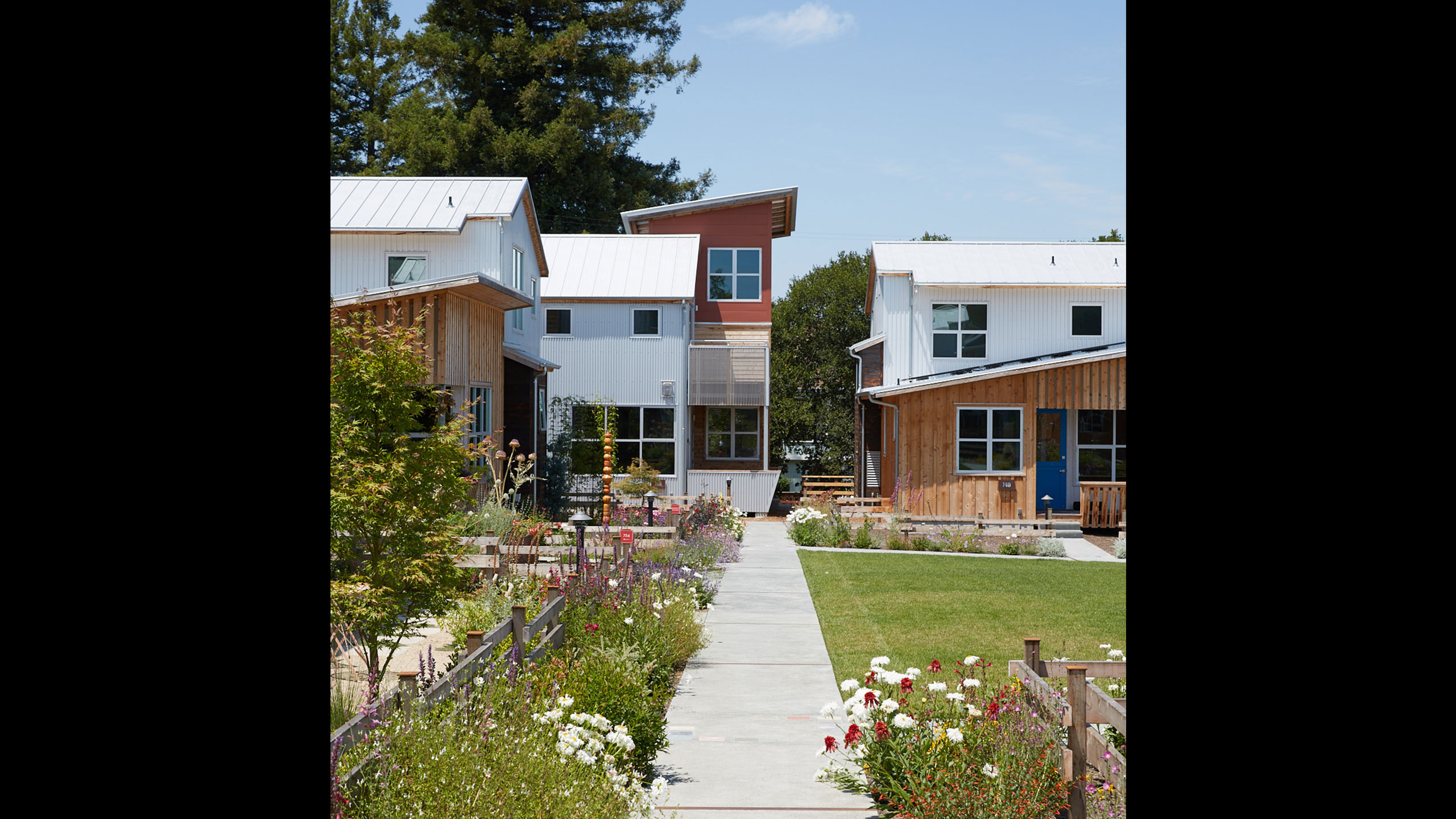 Sustainable-Architecture-Sonoma-County-Keller-Court-houses-built-with-concrete-metal-and-natural-wood