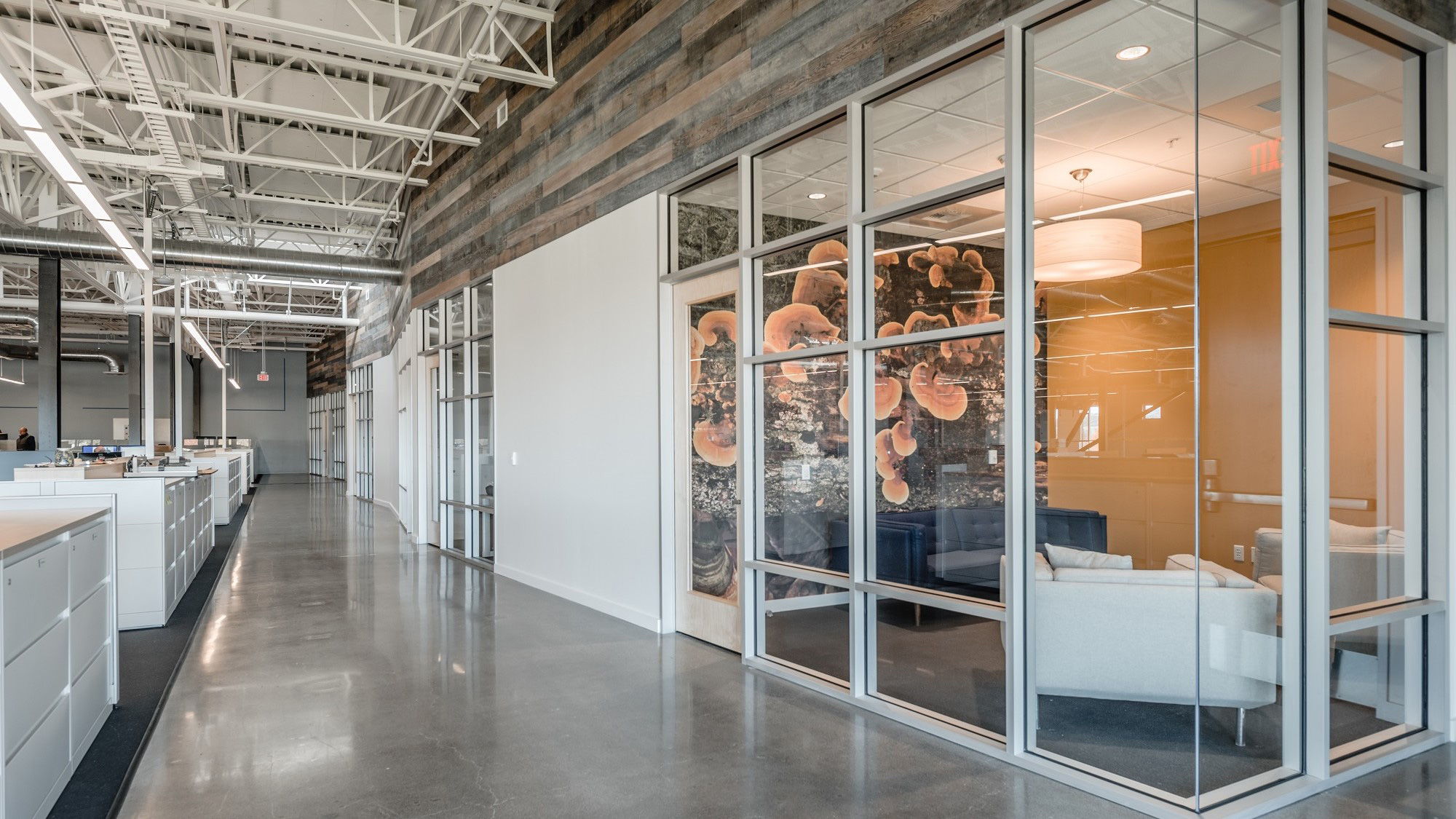 Tenant-Improvements-Rohnert-Park-TMI-2-2-Meeting-Room-with-glass-wall-and-wallpaper-under-reclaimed-wood-ceiling