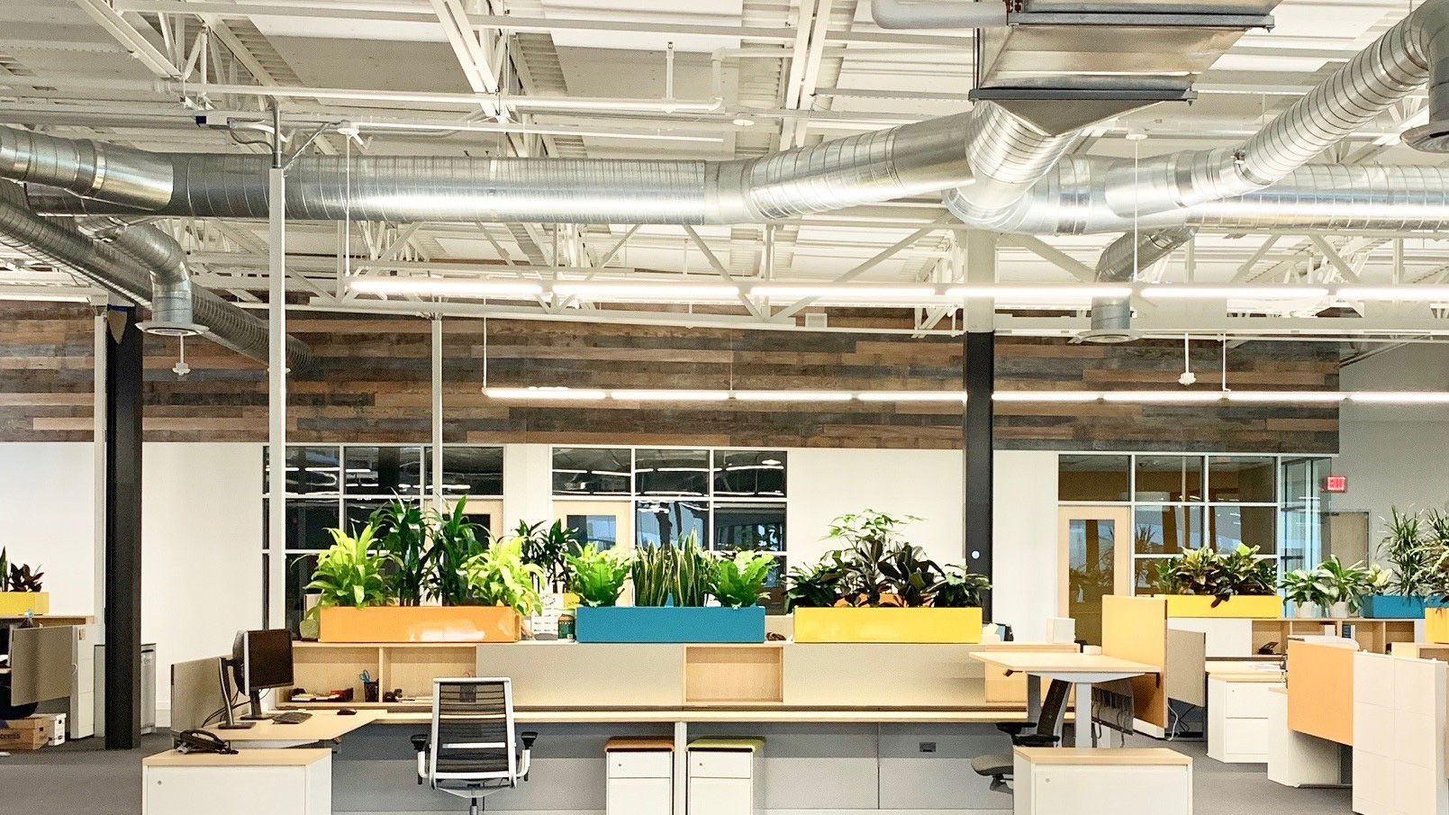Tenant-Improvements-Rohnert-Park-TMI-2-3-Exposed-industrial-ceiling