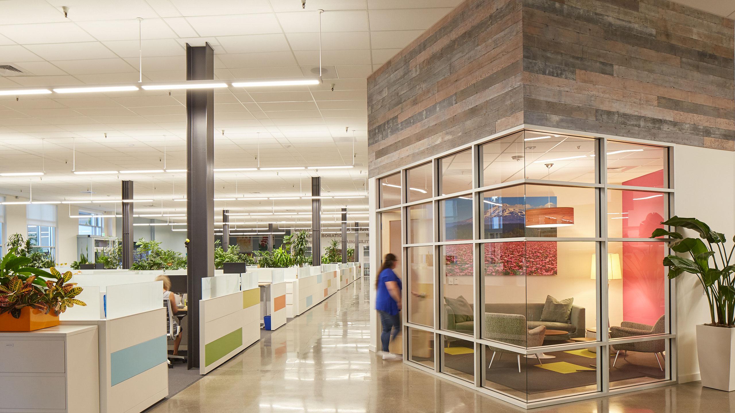 TMI-Tenant-Improvements-Sonoma-County-open-office-design