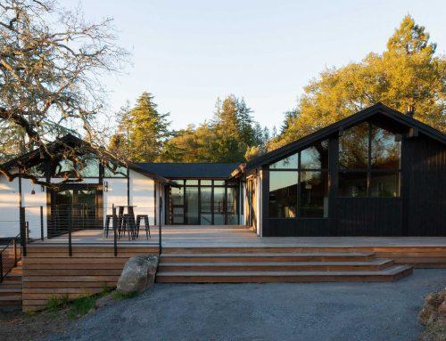 Zen House Mid Century Modern Makeover Santa Rosa